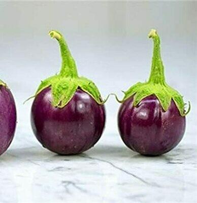 Eggplant Round 1LB
