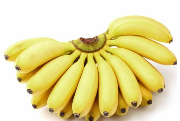 Manzano Banana LB