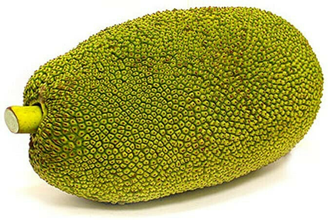 Jackfruit Fresh