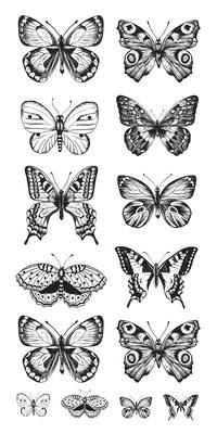Kaisercraft - Butterflies Clear Printed Stickers