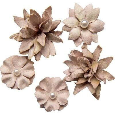 49 & Market - Mushroom - Mini Flower Packs (5 pieces)