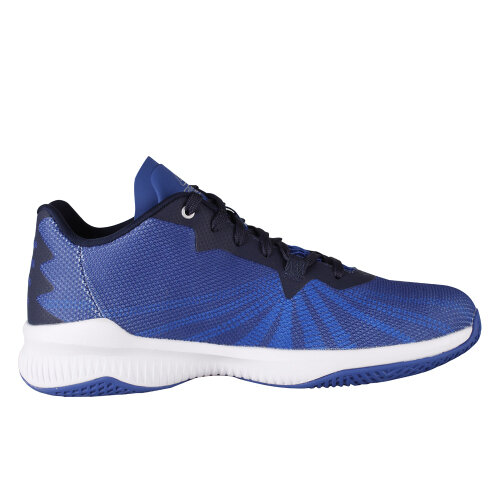 PEAK Outdoor Basketball Shoes (Blue)