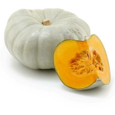 Jarradale/Grey Pumpkin