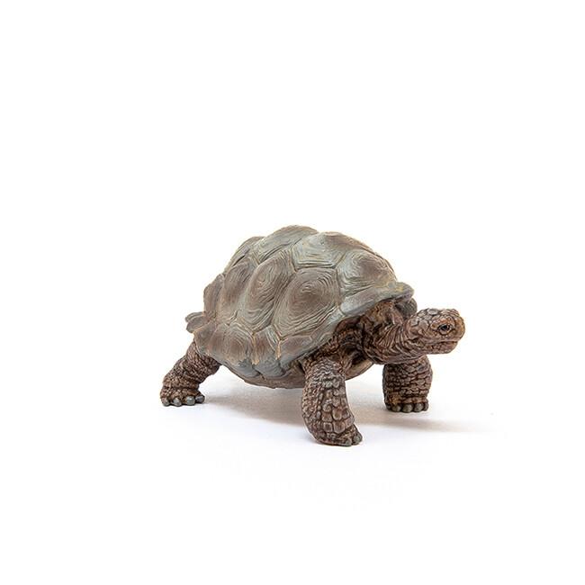 Schleich: Wild Life - Giant Tortoise
