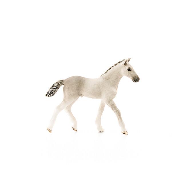 Schleich: Horse Club - Holsteiner Foal