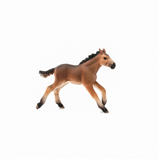 Schleich: Farm World - Mustang Foal