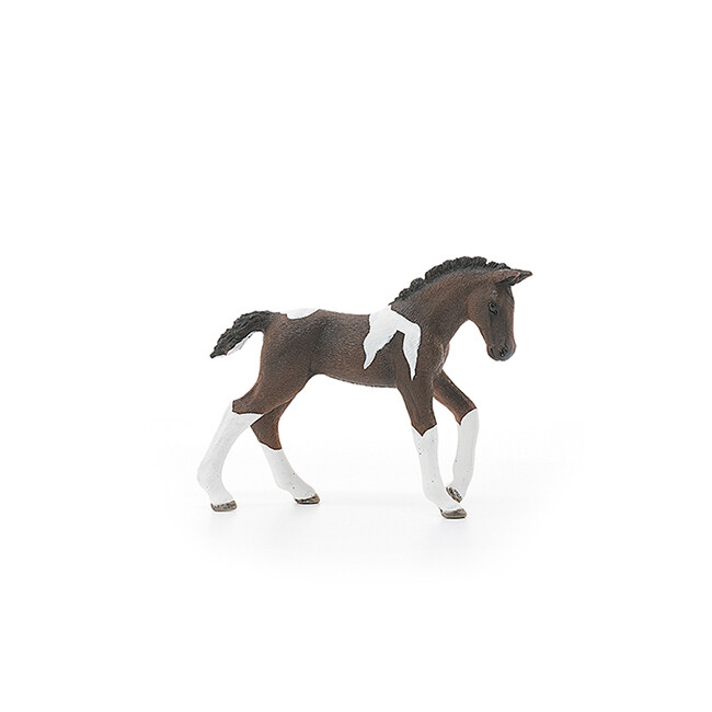 Schleich: Horse Club - Trakehner Foal