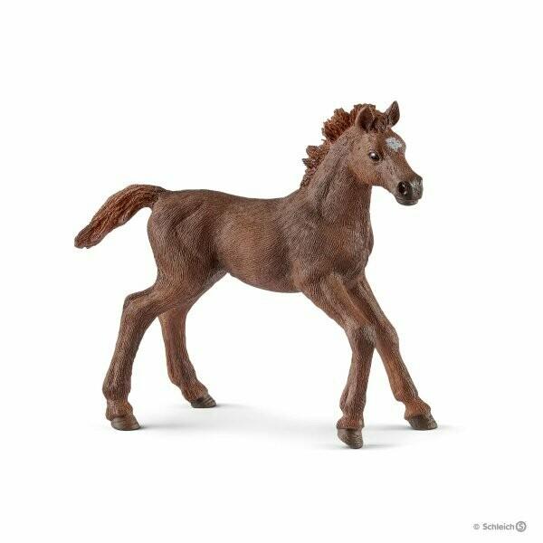 Schleich: Horse Club - English Thoroughbred Foal