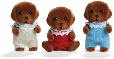 Calico; Chocolate Labrador Triplets