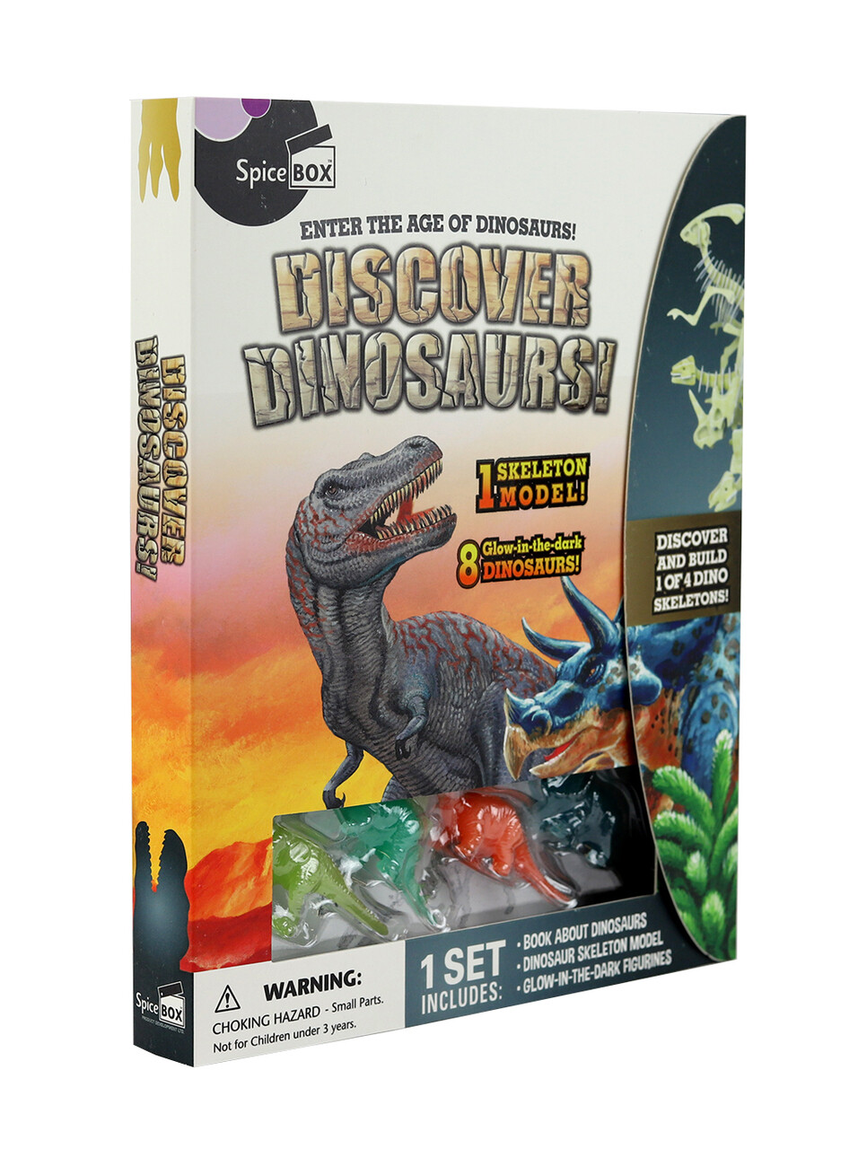 Spice Box; Discover Dinosaurs