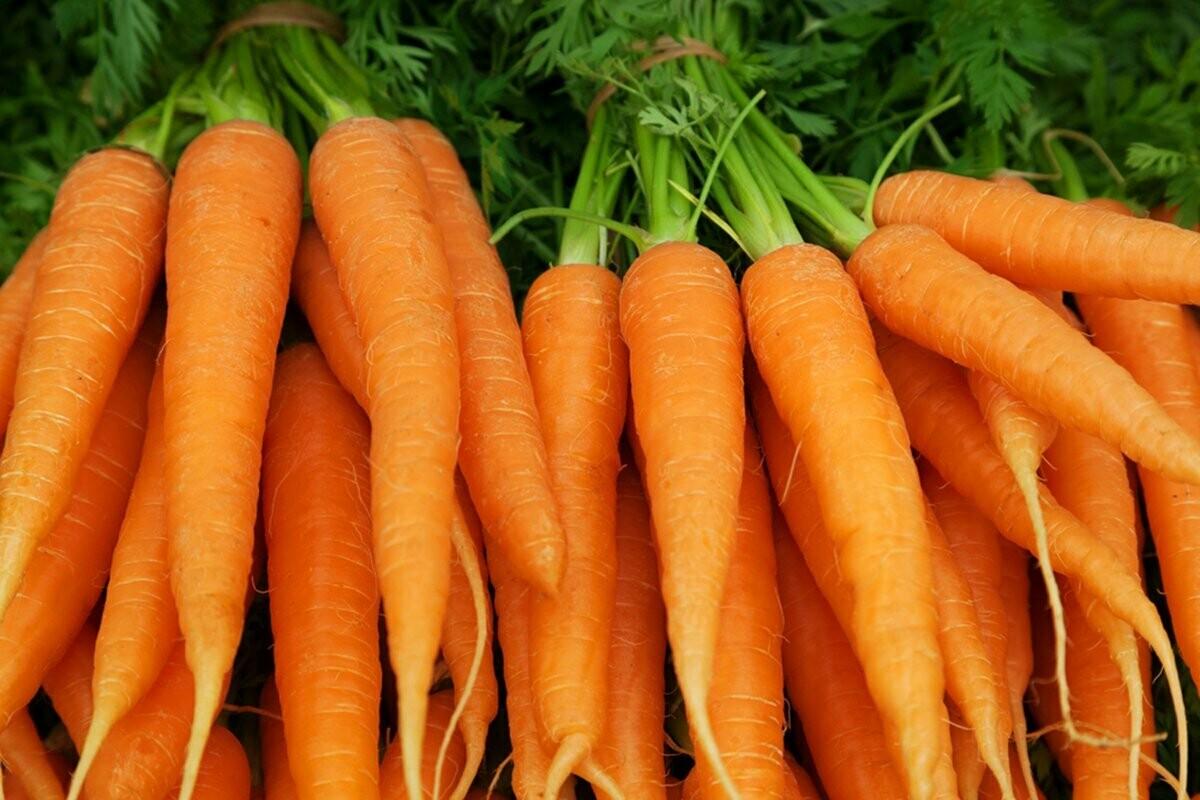 Carrots per kg