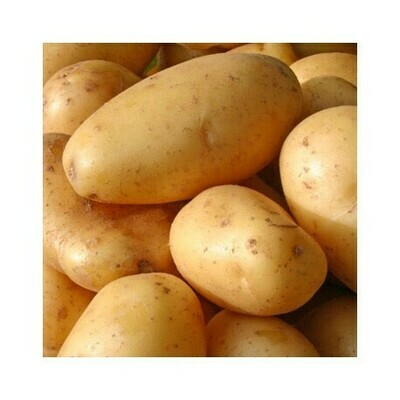 Potatoes Medium per kg