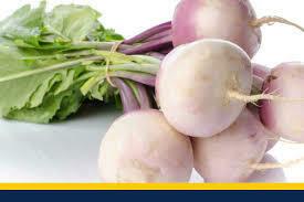 Turnip bunch