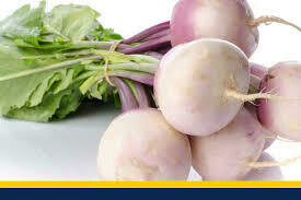 Turnip bunch