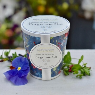 Forget Me Not - Seed Pot