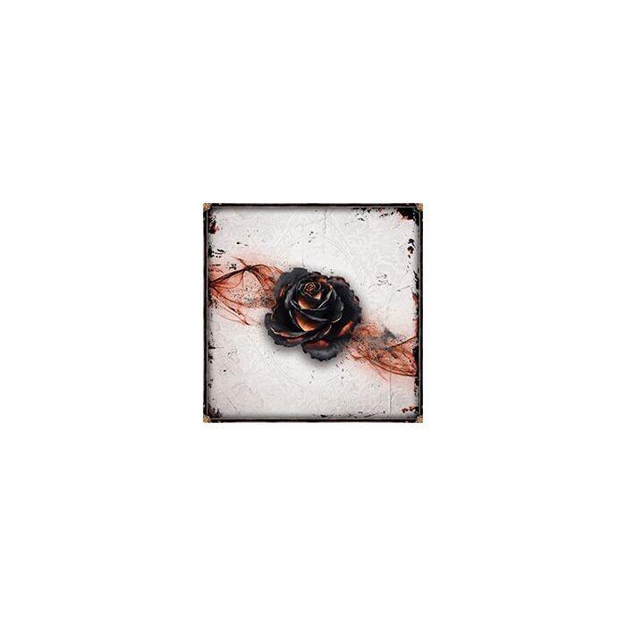 Black Rose Wars -ITA-