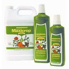 MaxiCrop Liquid Seaweed Original