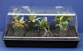 Mondi Mini Greenhouse Propagation Dome