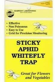 Sticky aphid Whitefly trap