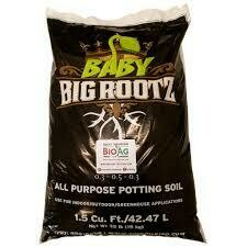 The Soil King Baby Rootz