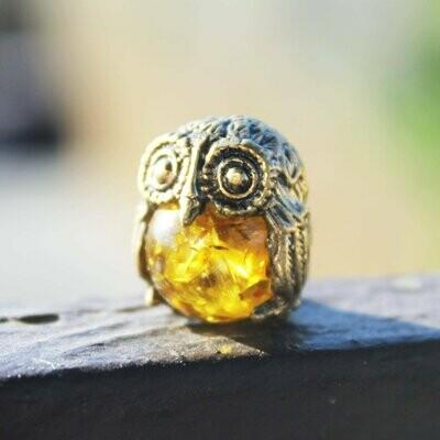 Owl With Sun Ball