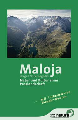 Maloja, Paesaggio di un valico fra natura e cultura NF-037