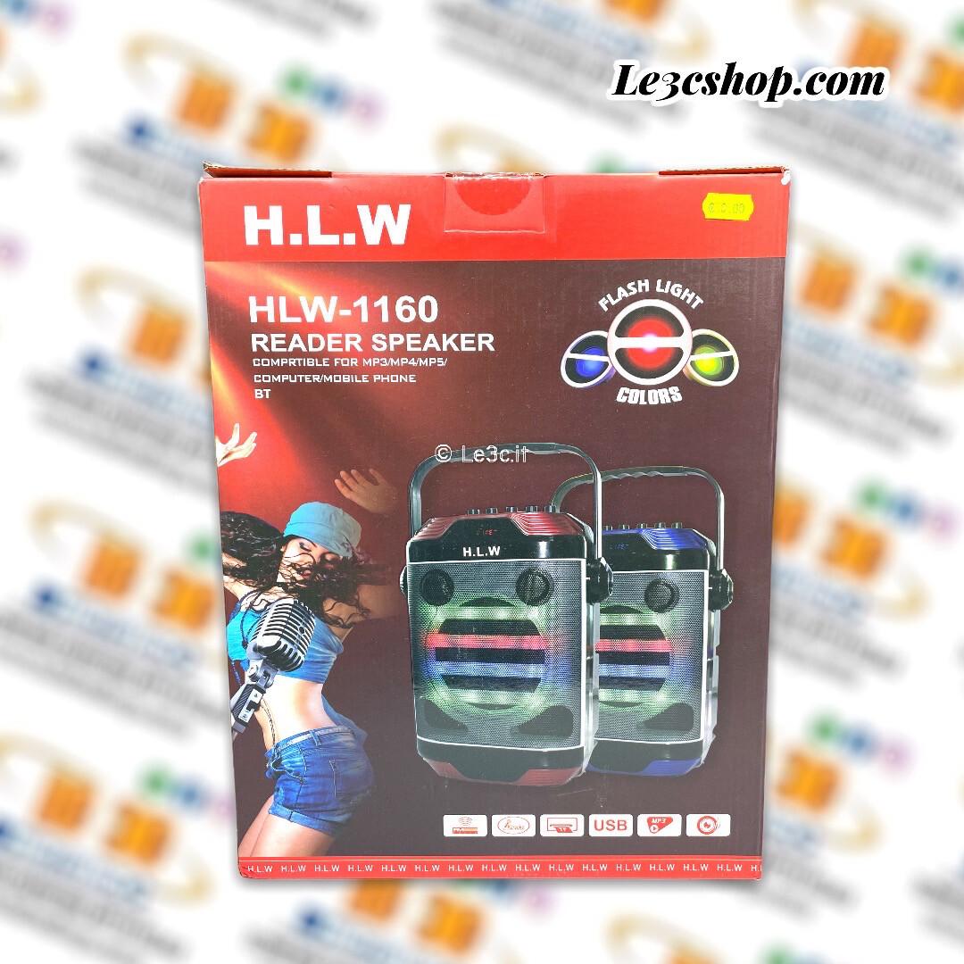 Karaoke speaker H.L.W fon microfono portatile.