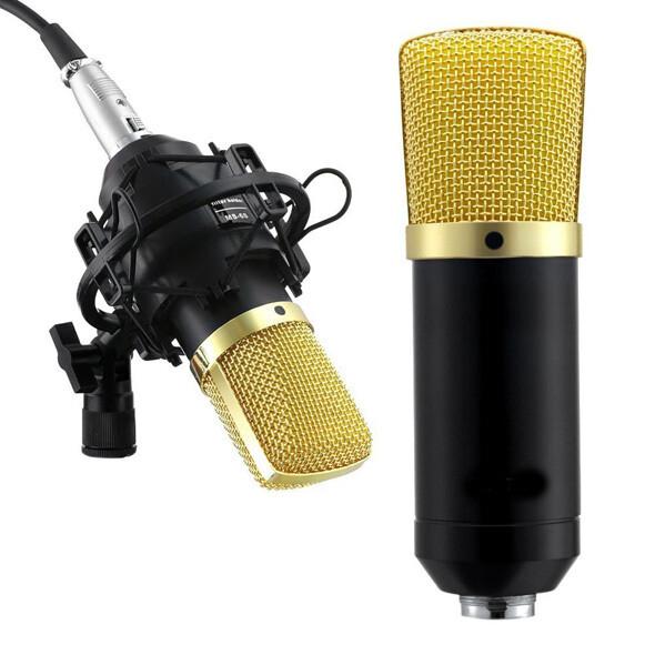 Microfono a Condensatore per Studio Modello Elvis Radiotelevisivo WVNGR DL-700