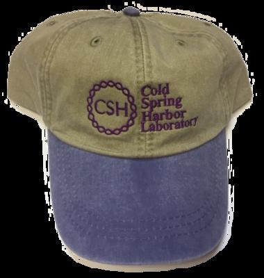 Baseball Caps Khaki/Purple