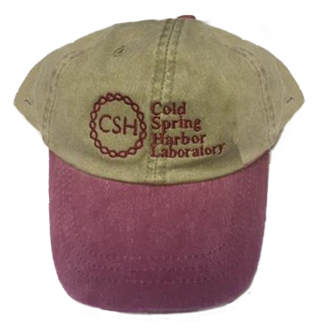 Baseball Cap - Khaki and Burgundy