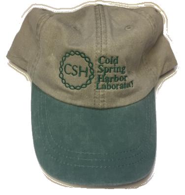 Baseball Cap - Khaki & Forest Green