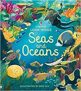 Look Inside Seas and Oceans
