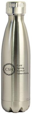Water Bottle SS Silver