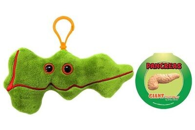 Giant Microbe KeyChain Pancreas