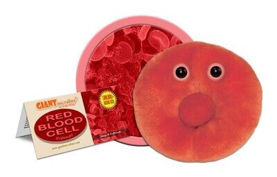Giant M Toy - Red Blood Cell
