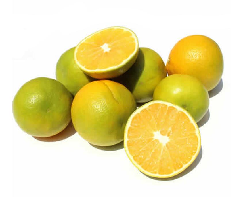 Naranjas Funda x 100 Unidades