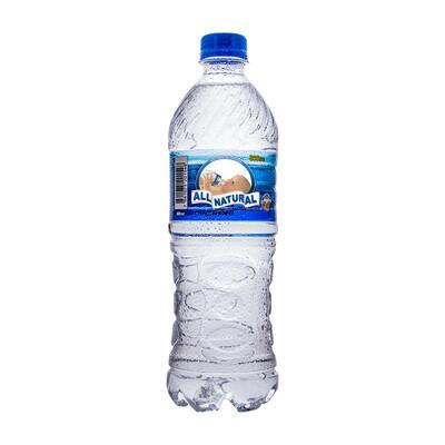 Agua ALL NATURAL Botella 600ml