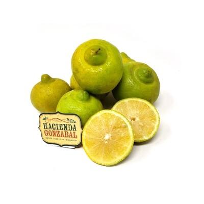 Limón Agrio Orgánico - x6 unidades