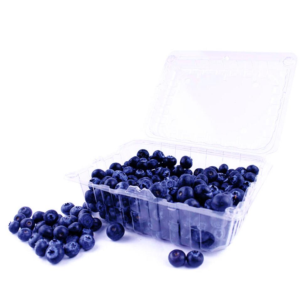 Arándanos azules / Blueberries 500g