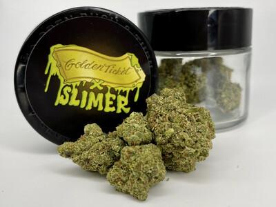 Golden Ticket (Slimer) (Sativa Hybrid)