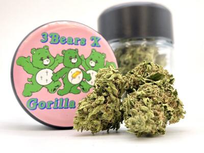 3 Bears x Gorilla Glue (Indica Hybrid)