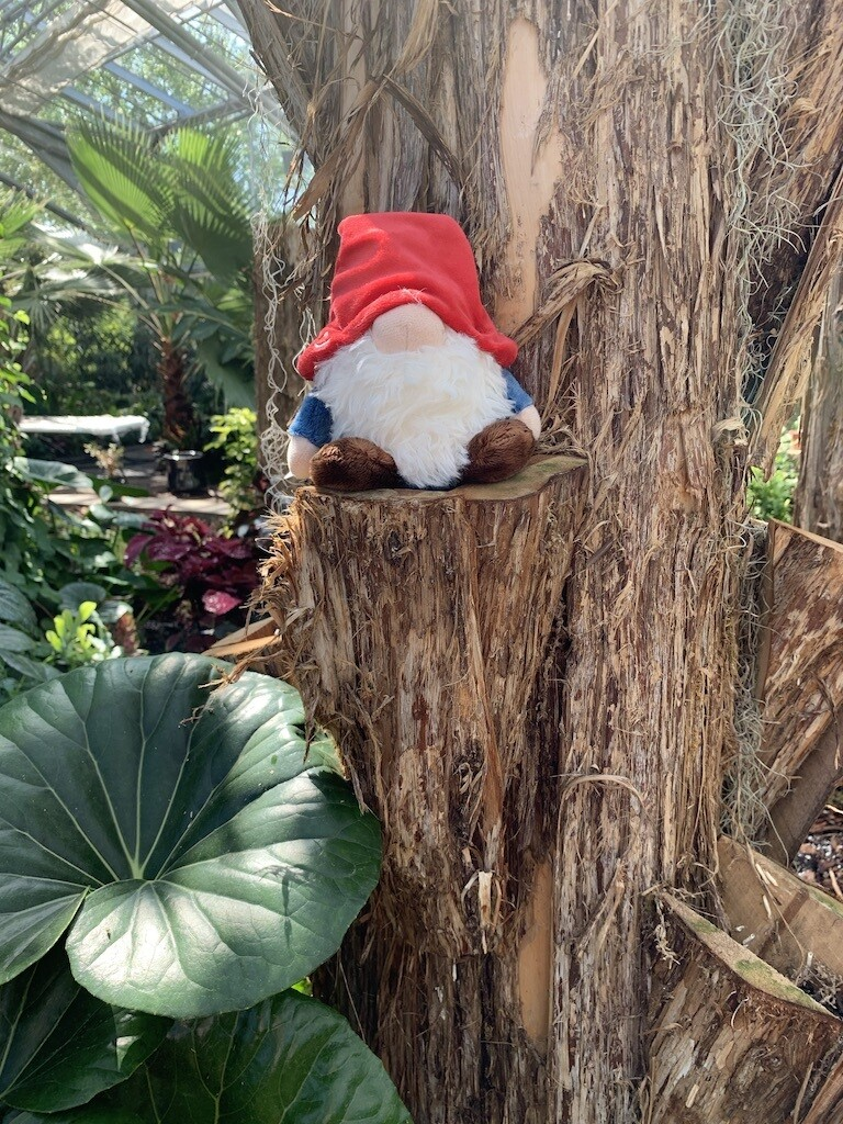*Gnome Plush - Small