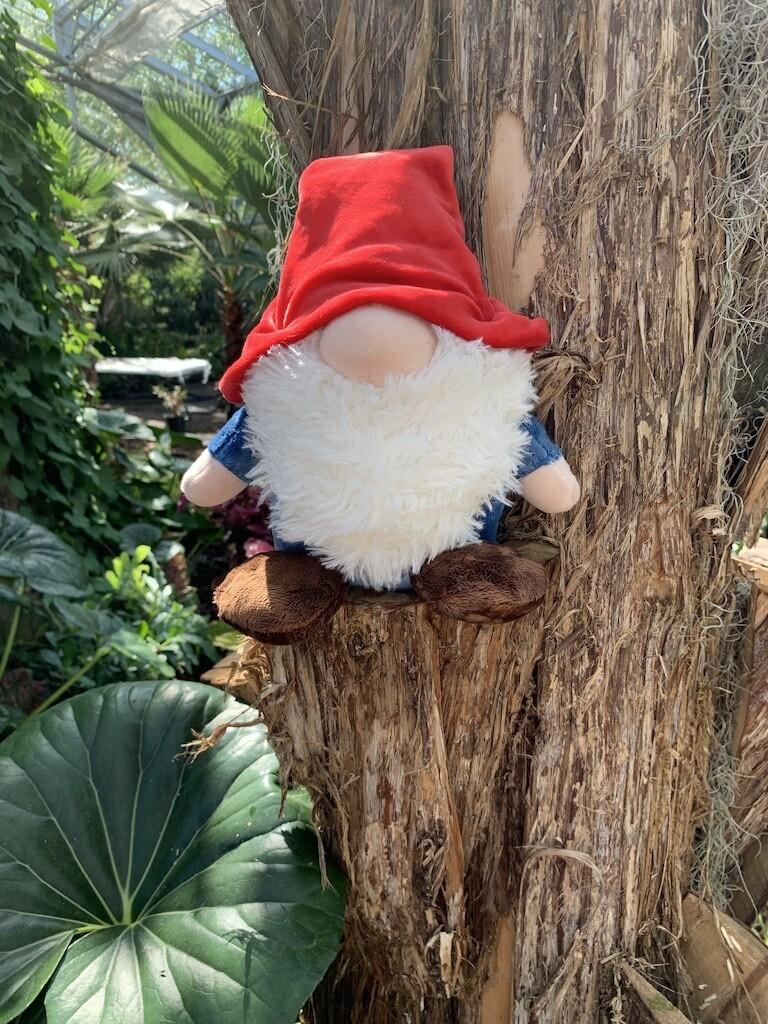 *Gnome Plush - Medium