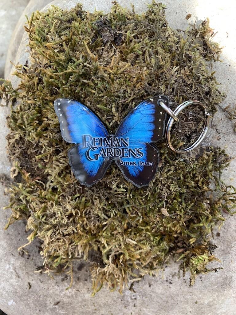 *Reiman Gardens blue morpho butterfly keychain