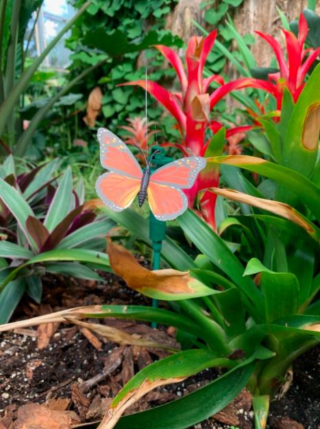 *Solar Flying Butterfly - Orange