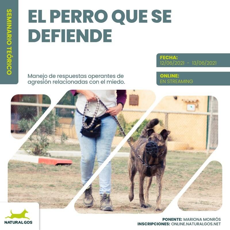 EL PERRO QUE SE DEFIENDE