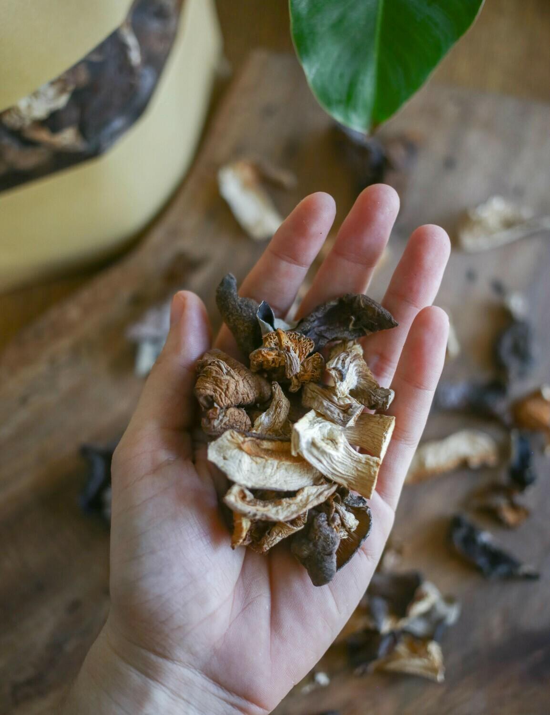 Wild Mushrooms / SETAS SALVAJES SECAS 100g