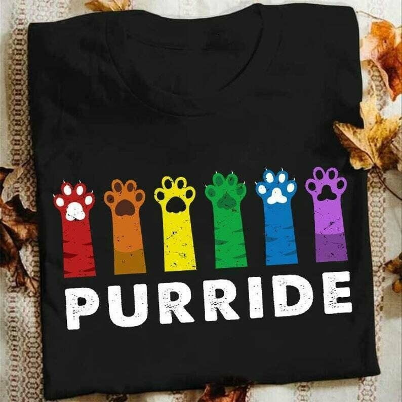 Funny Gay Pride Cat,Rainbow Cat Lover Gift,Funny Gifts Ideas For Gay And Lesbian Cute Gay T-Shirt