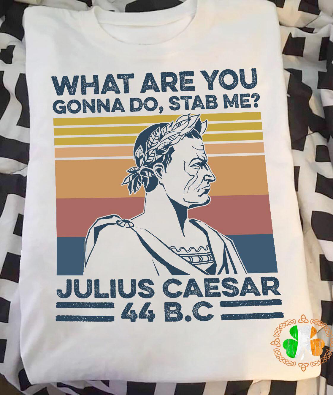 What are you gonna do stab me julius caesar 44 bc vintage retro shirt
