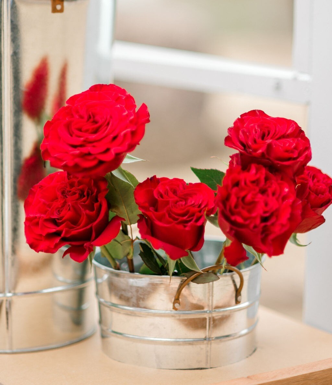 Half Dozen Of Red Roses
